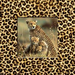 Obraz na plátne 30x30 Leopard
