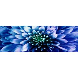 Obraz na skle 30x90