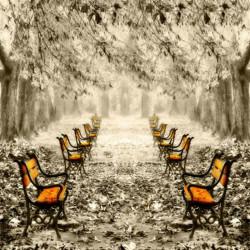 Obraz na skle 70x70