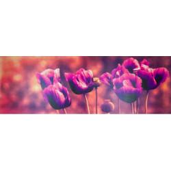 Obraz na plátne 50x150 Kvety
