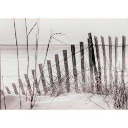 Obraz na plátne 50x70 Beach 2