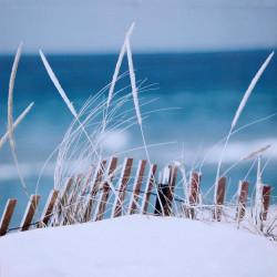 Obraz na plátne 70x70 Pláž