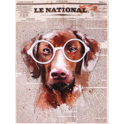 Obraz na plátne 30x40 Pes v novinách II.