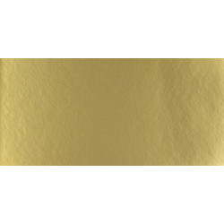 Pasparta Victoria Metal Gold 80x120