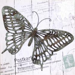 Obraz na plátne 50x50 3D Motýlia pošta I.