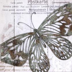 Obraz na plátne 50x50 3D Motýlia pošta II.