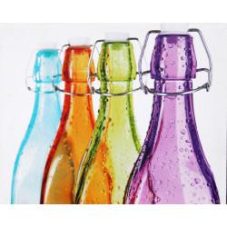 Obraz na plátne 40x50 Farebné fľašky 2