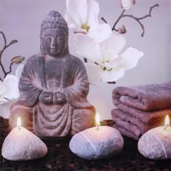 Obraz na plátne 70x70 Budha