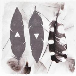 Obraz na plátne 40x40 Pierko I.