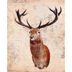 Obraz na plátne 40x50 Zviera dnes 1