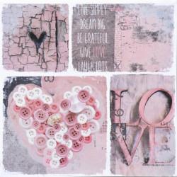Obraz na plátne 50x50 Ružový detail