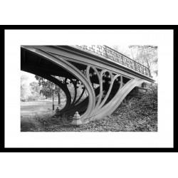 Č.B. rámovaný obraz 50x70