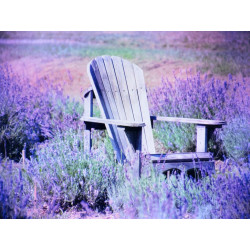 Obraz na plátne 60x80 Relax v poli