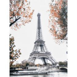 Obraz na plátne 75x100 Eiffelova veža na jeseň