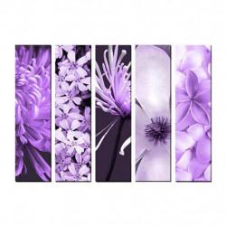 Obraz 5x   20x80cm Fauna&Flora