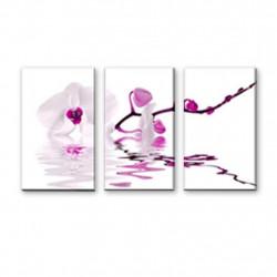 Obraz 3x   25x40cm Orchidea