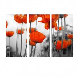Obraz 3x   25x40cm Makovice